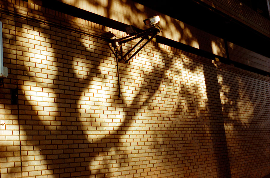 City Shadows. Copyright © Lisa Furness